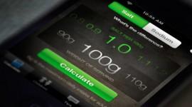 UNIT9 - The FSA: Salt Calculator