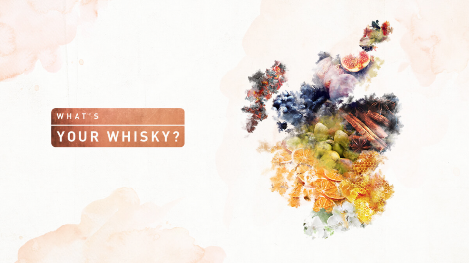 Diageo What's Your Whisky Selector